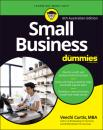 Скачать Small Business for Dummies - Veechi Curtis